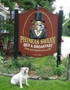 Vermont pet friendly hotel with a bulldog on their front sign