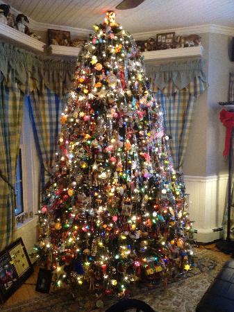 Phineas Swann Christmas Tree in Jay Peak Vermont