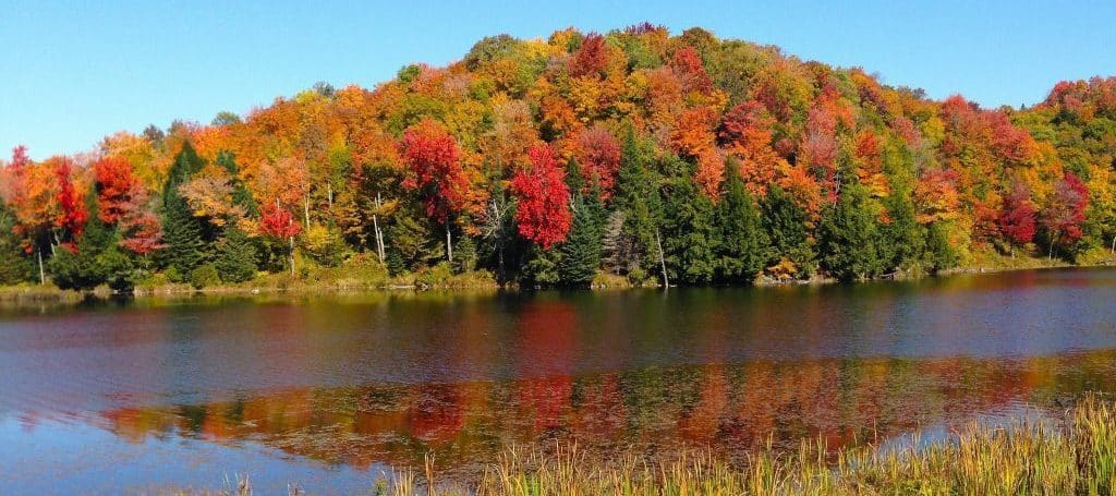 Vermont Fall Foliage at Belvedere Pond near the Phineas Swann Bed & Breakfast Inn